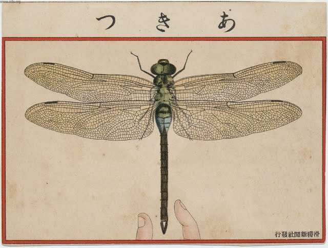 Dragon Fly from Ehagaki Sekai