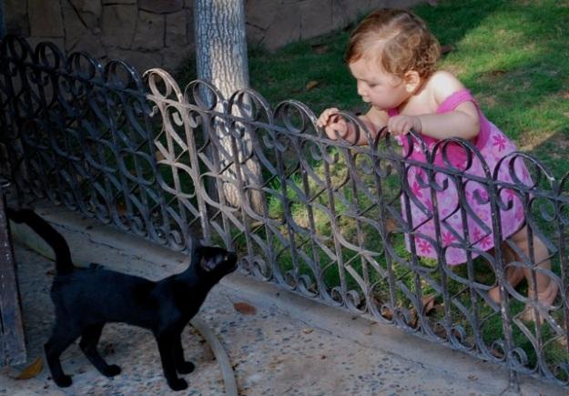 Cat & Maha