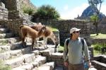 Machu Picchu - Fawad Khan